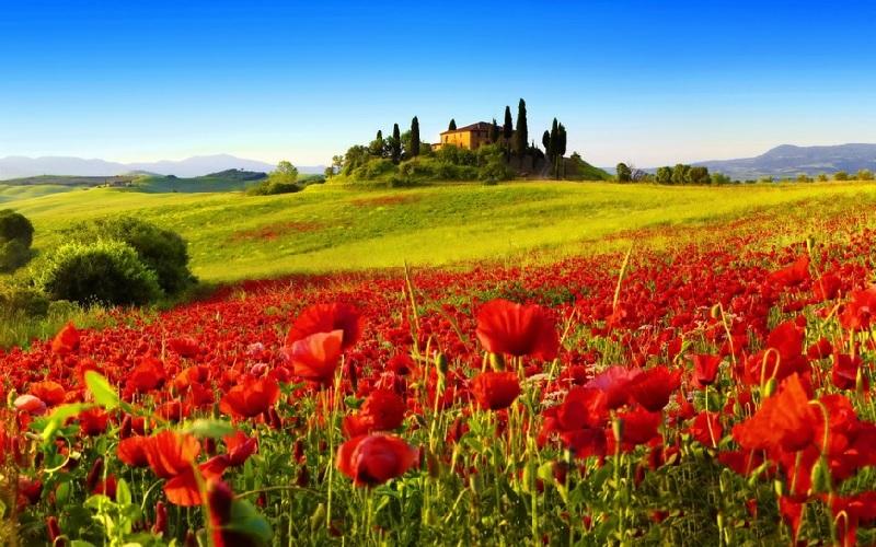 Votre séminaire Entreprise en Italie 3