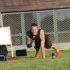 Team building à distance : Coach & Live