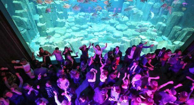 Soirée 20 000 lieues sous les mers 3
