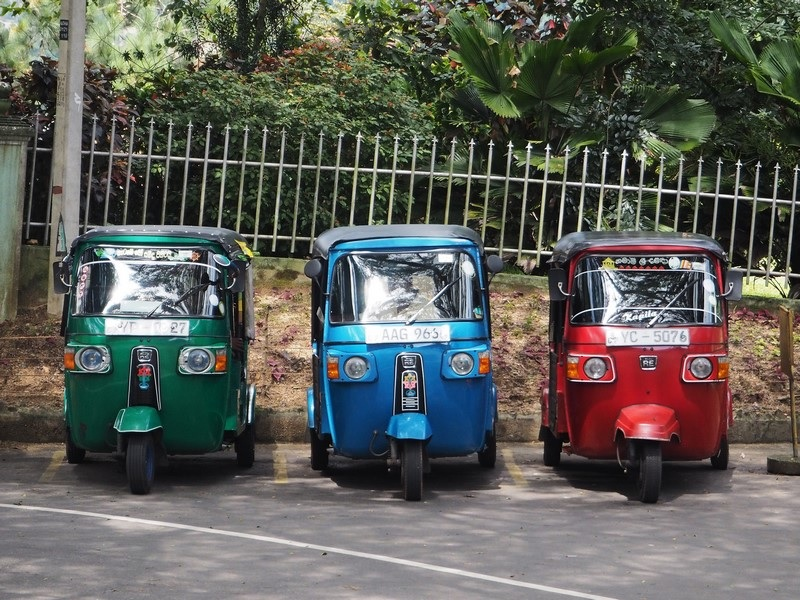 Voyage Incentive Sri Lanka 11